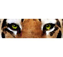 Tiger Art - Hungry Eyes Photographic Print