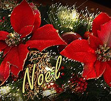 Noel by AuntDot