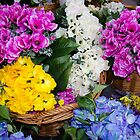 Flower Market - Silk Flowers by David Galson