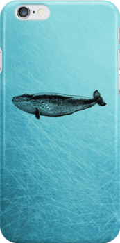 Whale - iPhone Case by Carol Knudsen