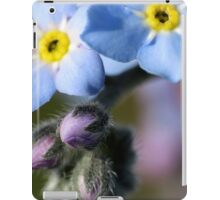 Forget-Me-Nots 6 iPad Case/Skin