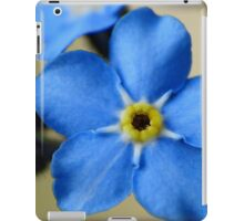 Forget-Me-Nots 11 iPad Case/Skin