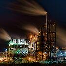 Kwinana Nickel Refinery by Glen  Robinson
