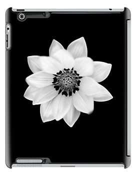 Black and White Gazania [Print and iPhone / iPad / iPod Case] by Damienne Bingham