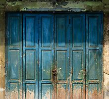 Old China Door by naphotos