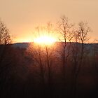 Here comes the Sun by Riebelova
