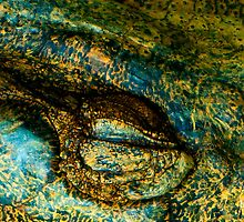 Eye of the Crocodile III [Print & iPad Case] by Damienne Bingham