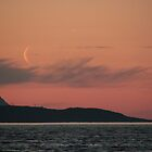 Moon rise by Riebelova