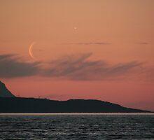 Moon rise by Riebelova