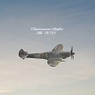Spitfire iPad by Catherine Hamilton-Veal  
