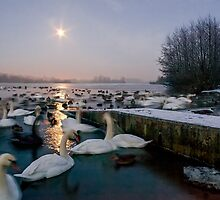 Frozen Whitlingham by Gary Rayner