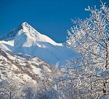 Matanuska Peak by Caren della Cioppa
