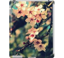 September Afternoon iPad Case/Skin