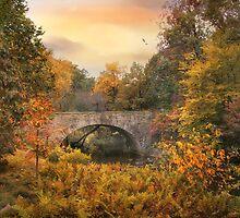 Botanical Bridge by Jessica Jenney