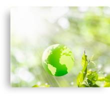 green globe Canvas Print