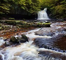 West Burton Falls (Cauldron Falls) - The Yorkshire Dales by Dave Lawrance