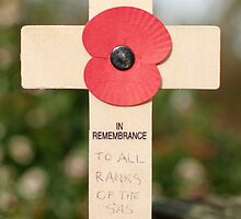 In Remembrance by cameraimagery