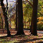 Autumn by JasSanchez
