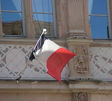FRENCH FLAG by Jack Catford