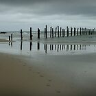 the old Jetty by Susan Segal