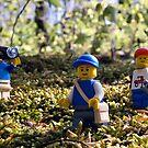 In the Woods by Dan Phelps