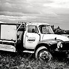 Old Bedford Truck by Deborah Clearwater