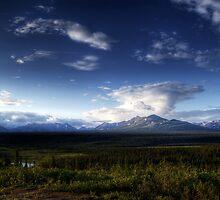 Wild Alaska in Summer by mcornelius