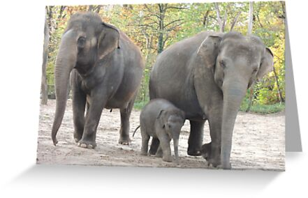 Elephant Family by CreativeEm