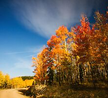 Road Of Many Colors by John  De Bord Photography