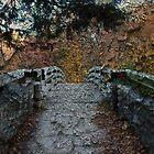 Bridge by SueMydliak