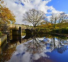 Dartmoor: Autmun Reflections at Hill Bridge by Rob Parsons