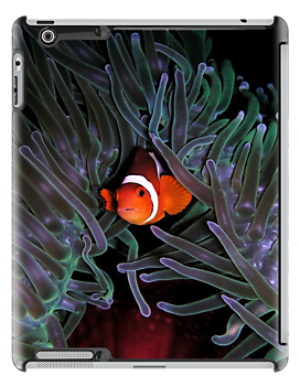 Clown Fish iPad Case by Jnhamilt