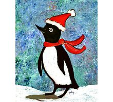Holiday Penguin Photographic Print