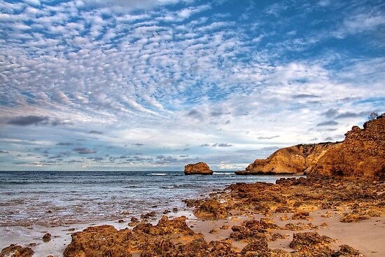 Looking Towards Rocky Point by Christine Smith