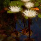 Angelic lilies by Celeste Mookherjee