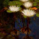 Angelic lilies by Celeste Mookherjee