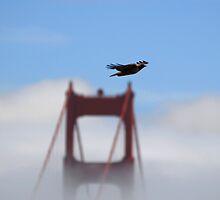 Eagle over Golden Gate Bridge by Michiel Meyboom