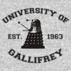 University Of Gallifrey by stevebluey