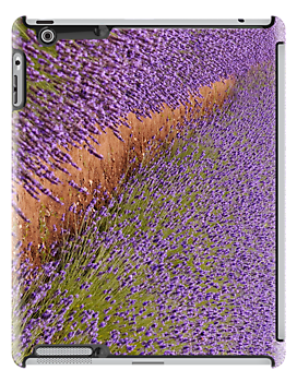Path through the lavender IPad case by Heather Thorsen