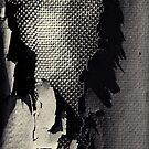 Fissure by milkayphoto