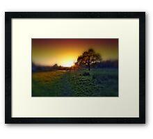 Oak tree at sunset Framed Print