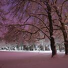 Dusk snow by Abi Skeates