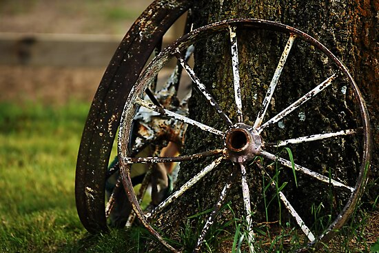 Wagon Wheels by Samantha Dean