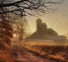 The Road to Amish Country by Lori Deiter