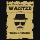 Heisenberg Wanted by iSmyth22