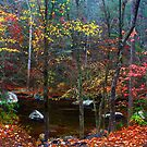ALONG LITTLE RIVER,AUTUMN by Chuck Wickham