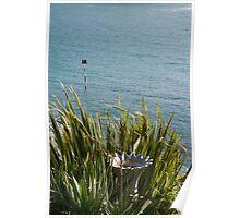 Birdbath amongst leaves in a coastal garden, Salcombe, Devon, UK Poster
