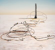 The Hippies Pilgrimage to Lake Eyre by John  Murray