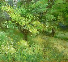 Magnolia by Guennadi Kalinine