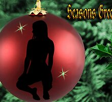 ✾◕‿◕✾ CHRISTMAS BULB GIRL SILHOUETTE SEASONS GREETINGS ❀◕‿◕❀ by ╰⊰✿ℒᵒᶹᵉ Bonita✿⊱╮ Lalonde✿⊱╮